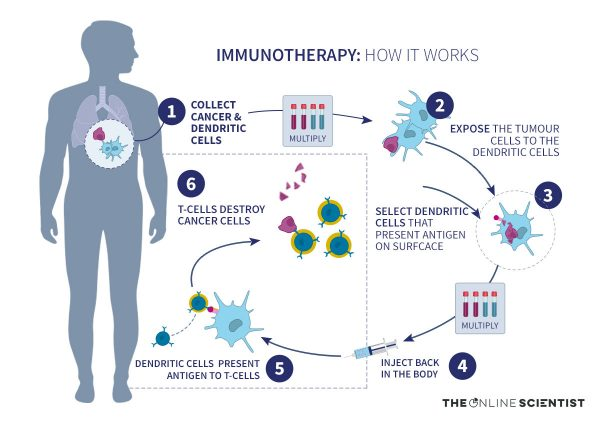 Infographic Immunotherapy- How does it work - by The Online Scientist